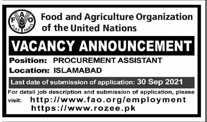 UN Jobs 2021 - United Nations Jobs Advertisement