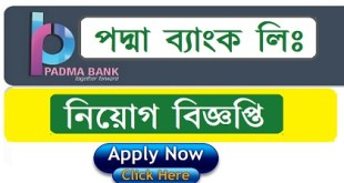Padma Bank Job Circular 2019
