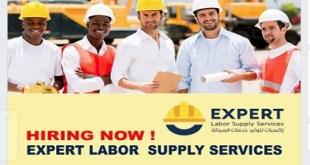 MANY JOB VACANCIES AT EXPERT LABOR SUPPLY SERVICES