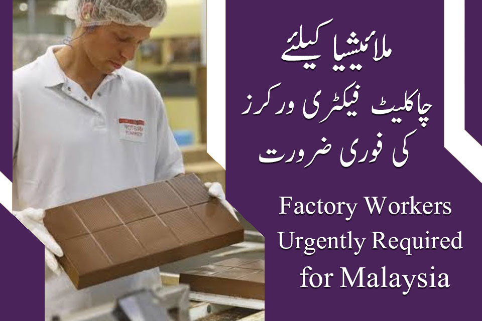 Malaysia Chocolate Factory Workers Jobs