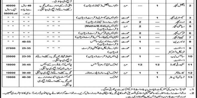 Punjab Daanish School Fazilpur Jobs July 2015 (Male & Female)