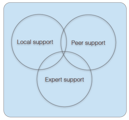 Local, peer and expert support