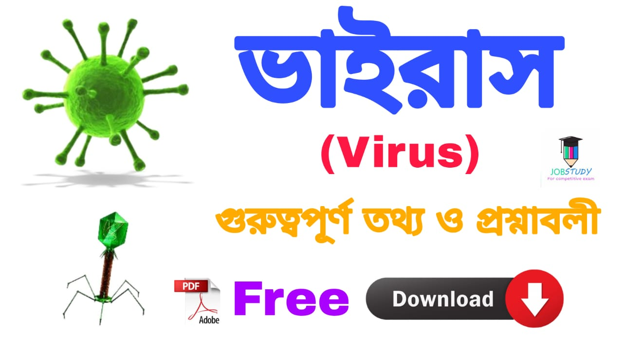 You are currently viewing Virus (ভাইরাস ) Bengali Pdf