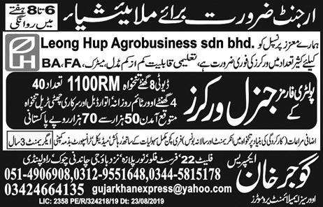 Poultry Farm Workers jobs in Malaysia Advertisement