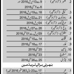 Mujahid Force Jobs 2016