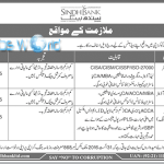 Sindh Bank Limited Jobs 2016 In Pakistan