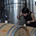 10. Recording wine in Irpinia, Italy