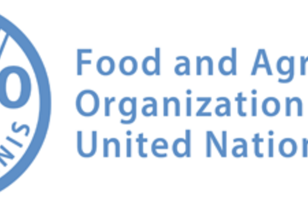 Monitoring and Evaluation Specialist at FAO 2021