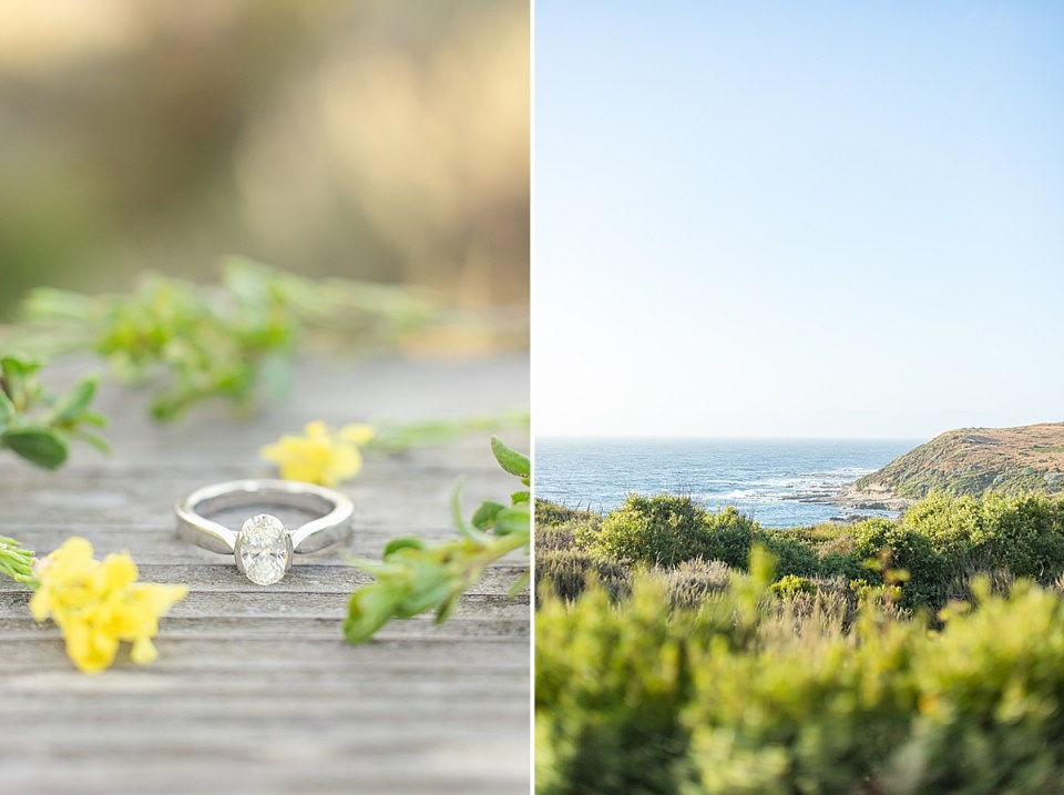 Lauren's engagement ring surrounded by yellow flowers and greenery. A second image of the coastline and bluff at during their Montaña de Oro.
