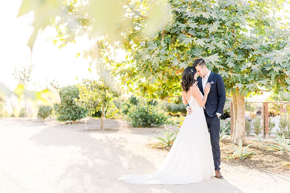 The couple sharing an intimate moment under a tree while being forehead to forehead during their San Luis Obispo Farm Wedding