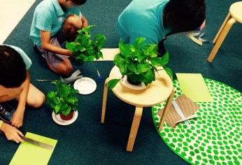 Students selected their own plant and decorated it