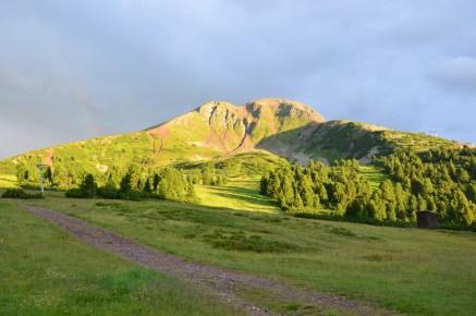 Schwarzhorn im Sommer