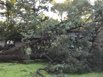 Storm Damage 08-10-18-13DB