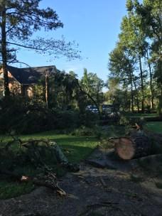 Storm Damage 08-10-18-3DB