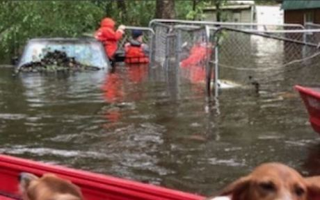 The Coast Guard rescues people and pets in Riegelwood, NC