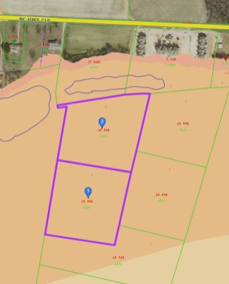 A Johnston County GIS map of two tracts of land being purchased by the Town of Smithfield for $80,000 for future park space. The shaded area shows the floodplain. Both tracts of land are within the 100 year floodplain.