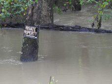 Flooding near Four Oaks