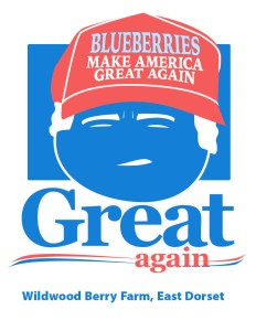 Blueberries make America Great Again, the Trump inspired post-election blueberry t-shirt design