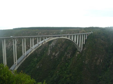 This is the Bloukrans Bridge. We drove across this bridge and when we got to the other side, I jumped off of it head first and fell for 600 feet!