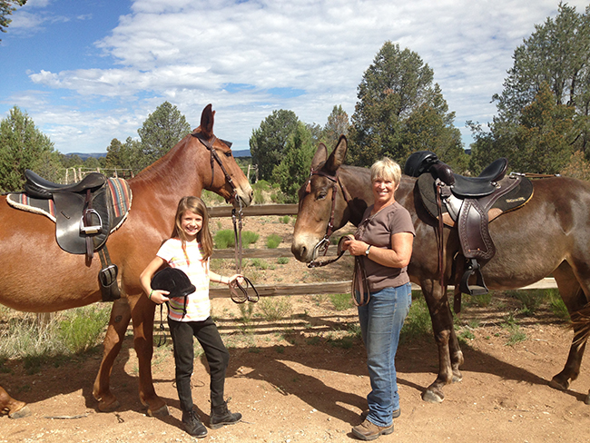 Author Rose Miller and her mules