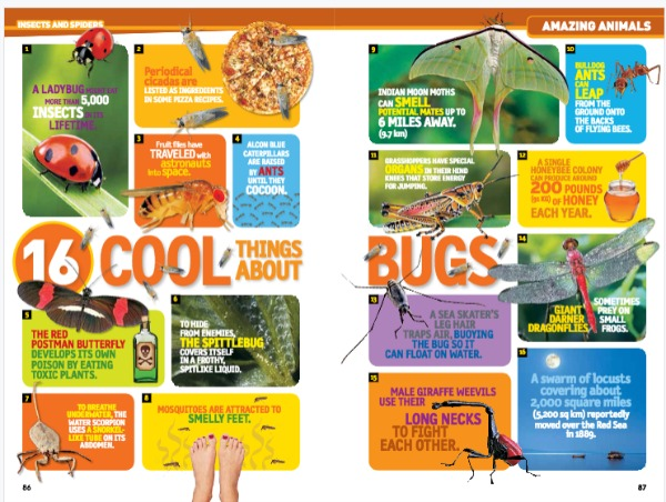 Nat Geo Kids Almanac Review and Giveaway