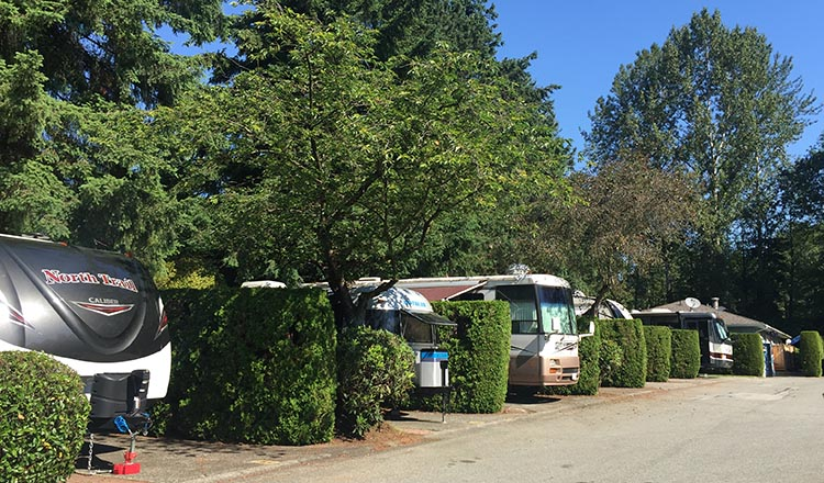 Review of the Burnaby Cariboo RV Park. A saving grace at the Burnaby Cariboo RV Park is the generous amount of hedges and trees