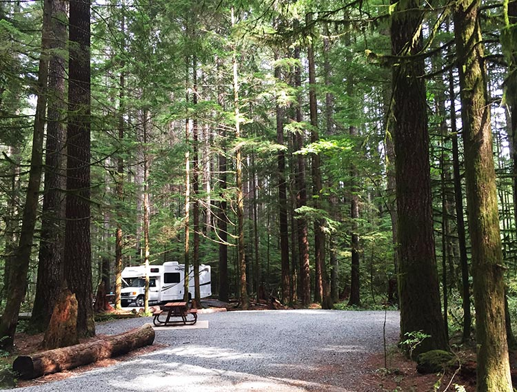 A typical camp site on Vancouver Island. This one was in Gordon Bay Provincial Park