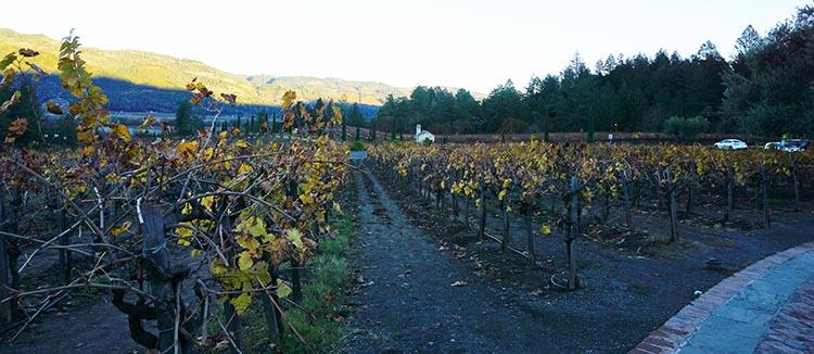 Winery Tours in Calistoga, Napa Valley, California. The vineyards at Castello di Amorosa in Calistoga