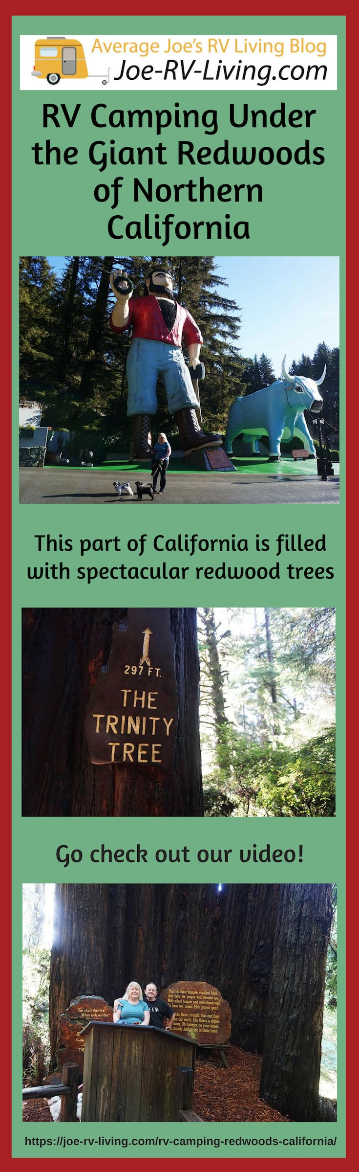 RV Camping Under the Giant Redwoods of Northern California.