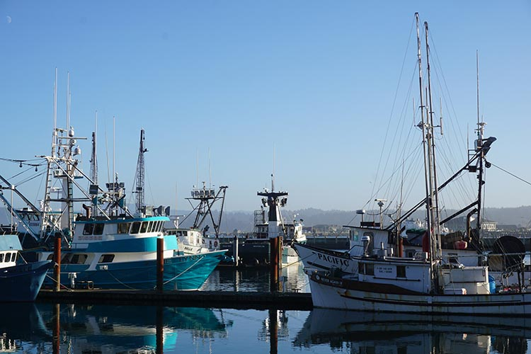 Review of Beverly Beach State Park, near Newport, Oregon. Fishing boats in the historical harbor area of Newport
