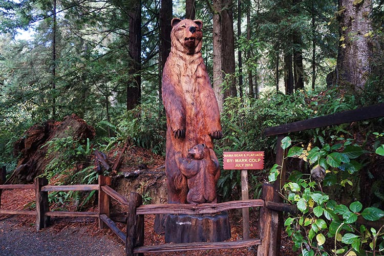RV Camping Under the Giant Redwoods of Northern California. In the Trees of Mystery Park there are many redwood sculptures