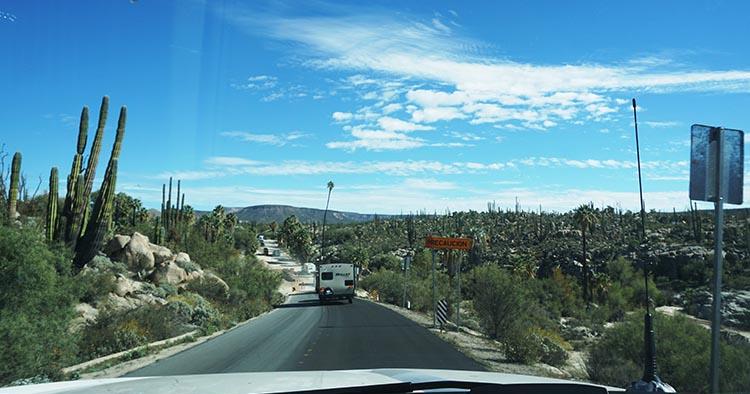 We loved the beautiful desert views while driving through Baja California, Mexico