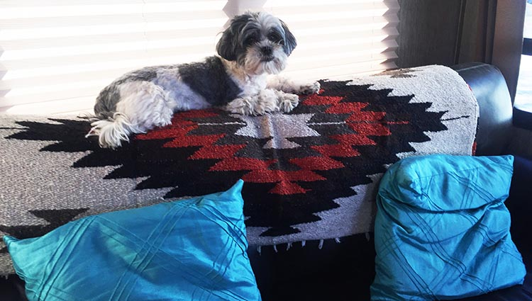 This is the cheerful blanket we bought from a beach vendor for 600 pesos. We could have beaten him down to 400 pesos, but I thought it was worth 600