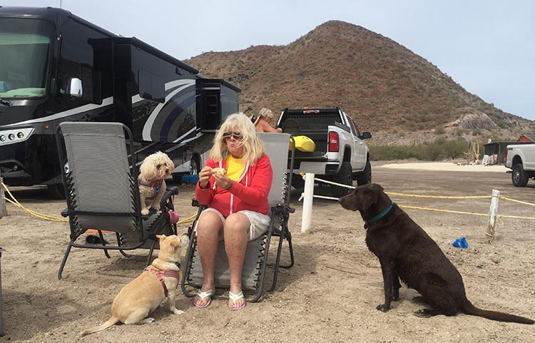 Here's Jerry's wife Kathy with her well loved dogs