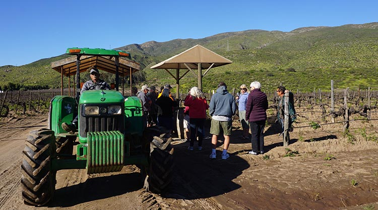 The wine tasting tour on a tractor was a lot of fun!