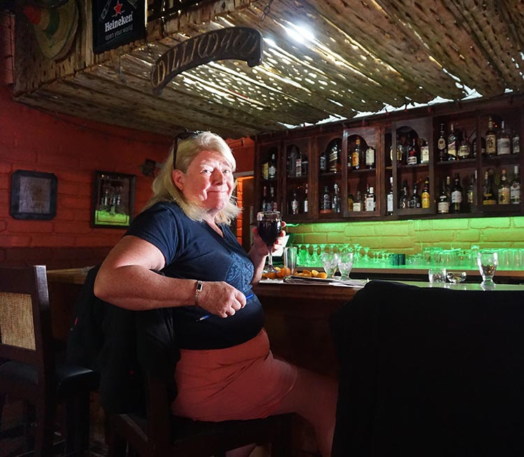 Here I am at the bar at the Malarrimo RV Park in Guerrero Negro. This was my happy smile after I finally managed to get a drink!