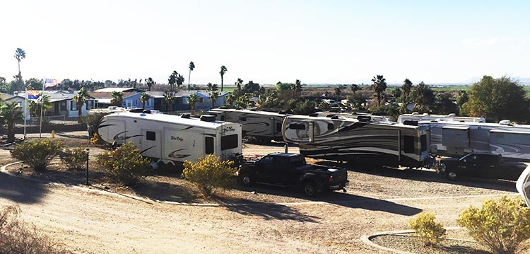 A view of part of the Arizona Oasis RV Resort