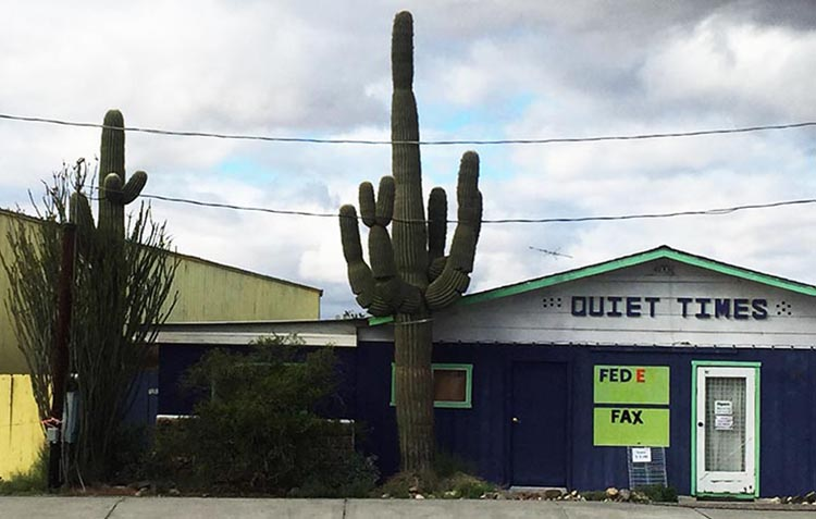 In nearby Quartzsite you will find a range of businesses, and some very impressive cacti