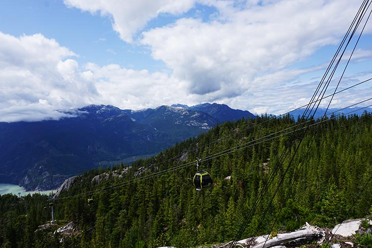 The Sea to Sky gondola ride is simply world-class awesome. Unfortunately, since we went up, all of the gondolas fell down one morning. No one was hurt. The RCMP are investigating possible vandalism