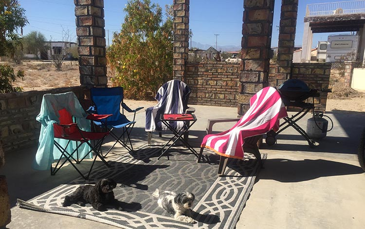 Here are our dogs on our front patio at El Dorado Ranch