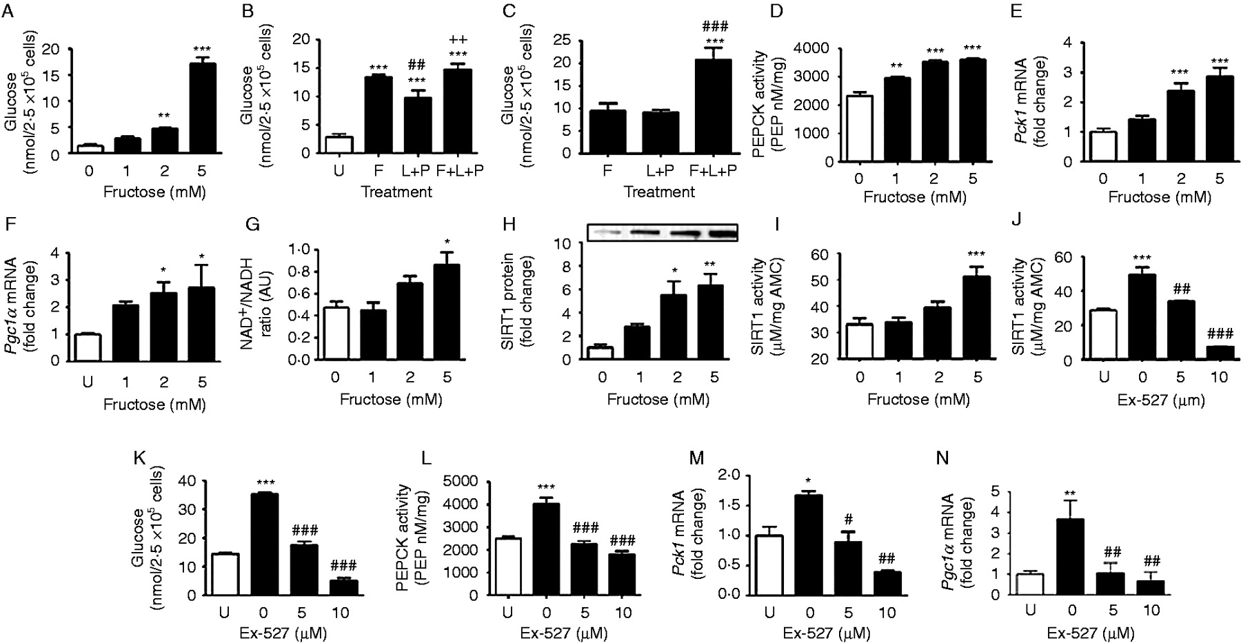 Fructose Induces Gluconeogenesis And Lipogenesis Through A Sirt1 Dependent Mechanism In Journal
