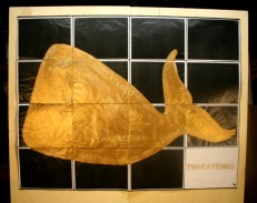 1. Golden Whale #1.