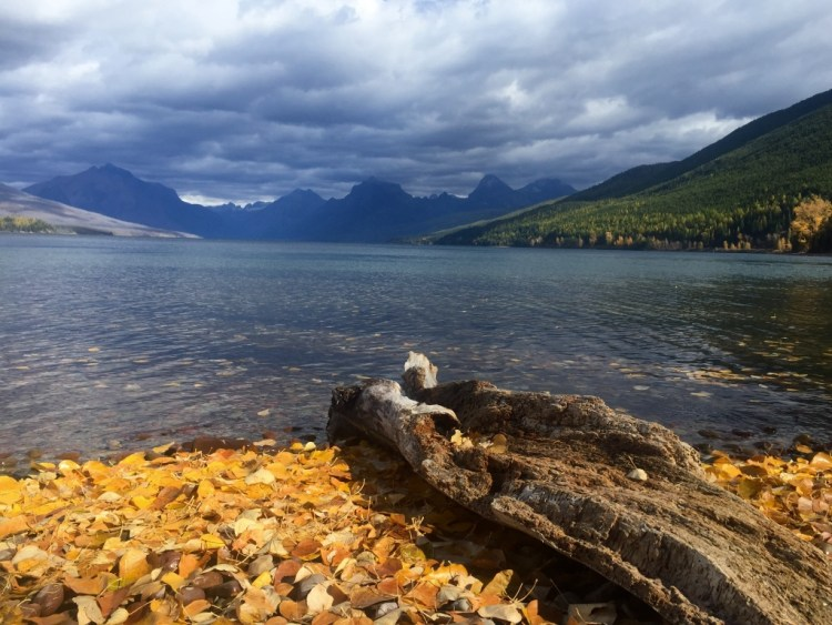 We stayed at the Apgar Campground next to Lake McDonald.