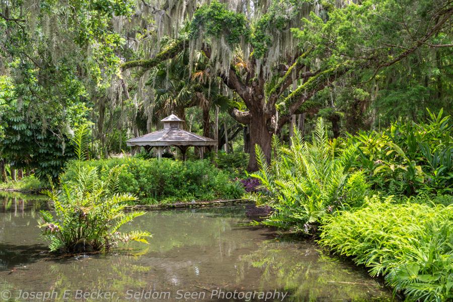 Home St Augustine Florida Washington Oaks Gardens State Park