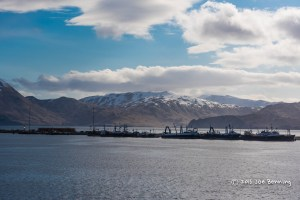 Dutch Harbor Port in the Morning