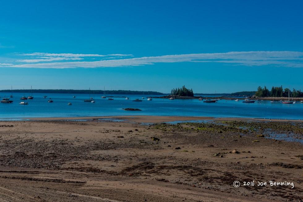Seal Harbor at Low Tide