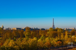 Overlooking Eiffel Tower and Tuilerie Gardens