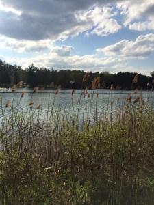 Green Lakes Park