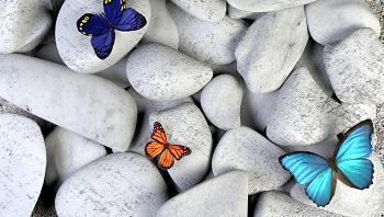 mindfulness thumb