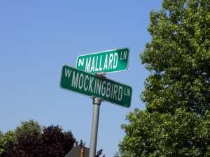 North Mallard Lane is actually in my neighborhood.